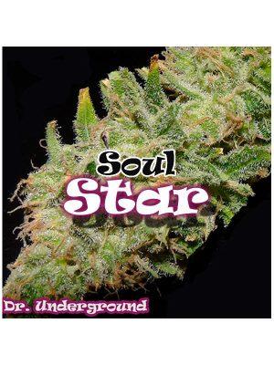 Soul Star von Dr Underground