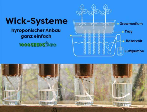 Wick-Grow Hydroponic