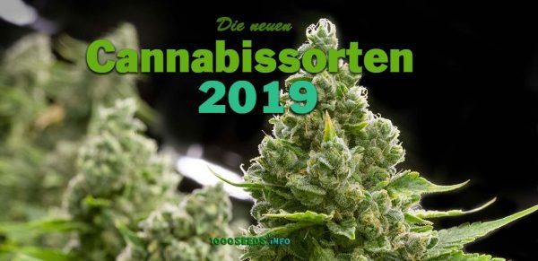 Neue-Cannabissorten-2019