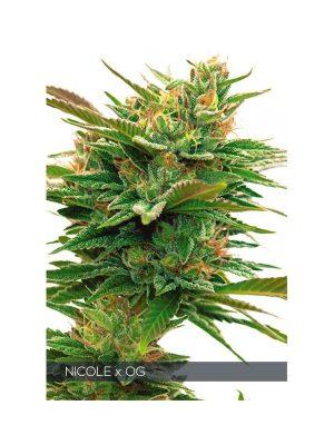 Nicole-x-OG