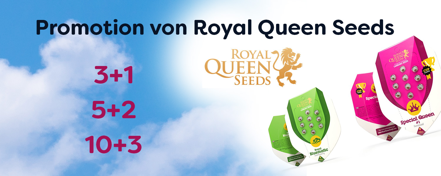 Promotion-Royal-Queen-Seeds
