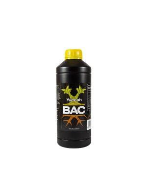 Yuccah von BAC