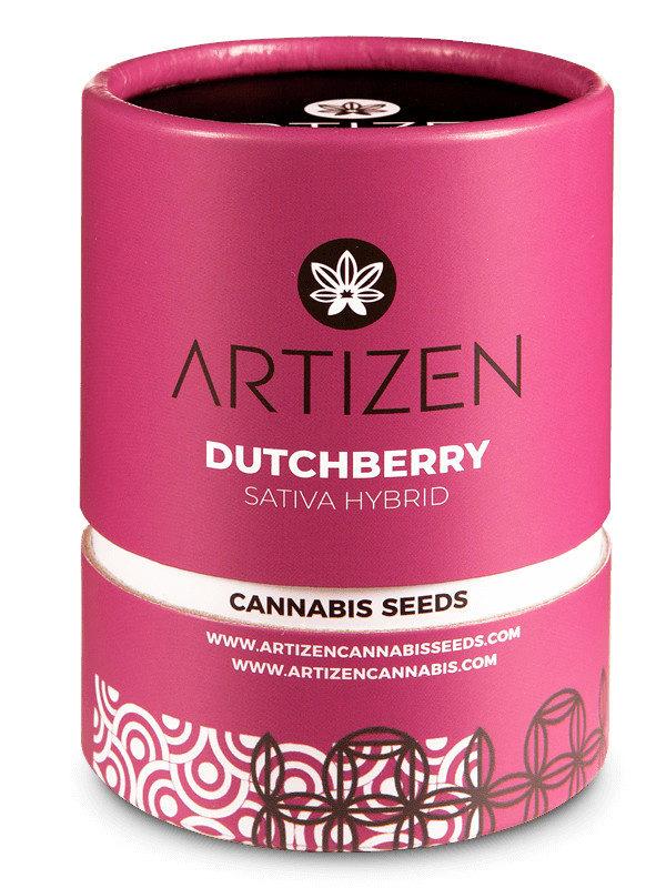 Dutchberry von Artizen