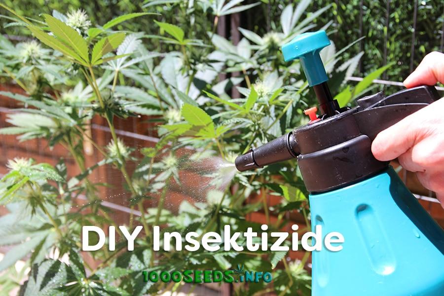 DIY-insektizide-Tipps