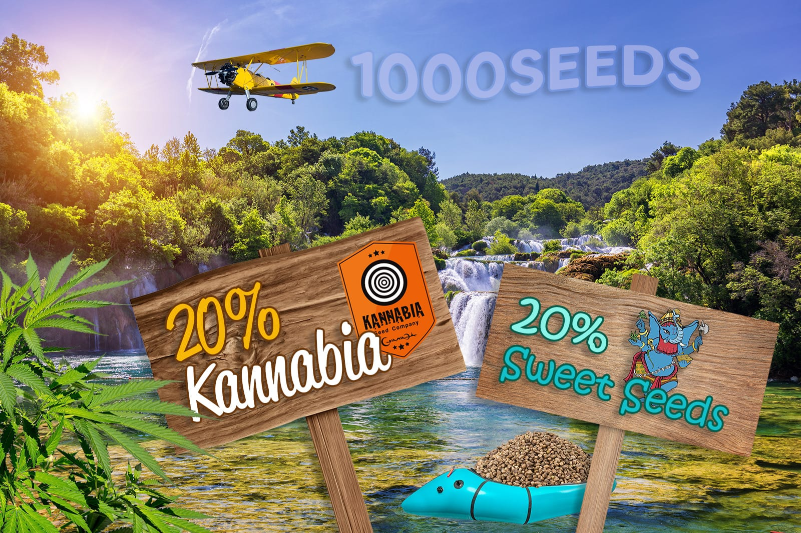 Seedbankprozente-1000Seeds-Mai-2019
