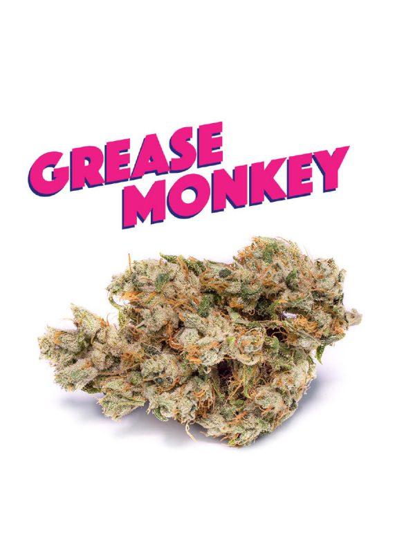 Grease Monkey von Phat Panda