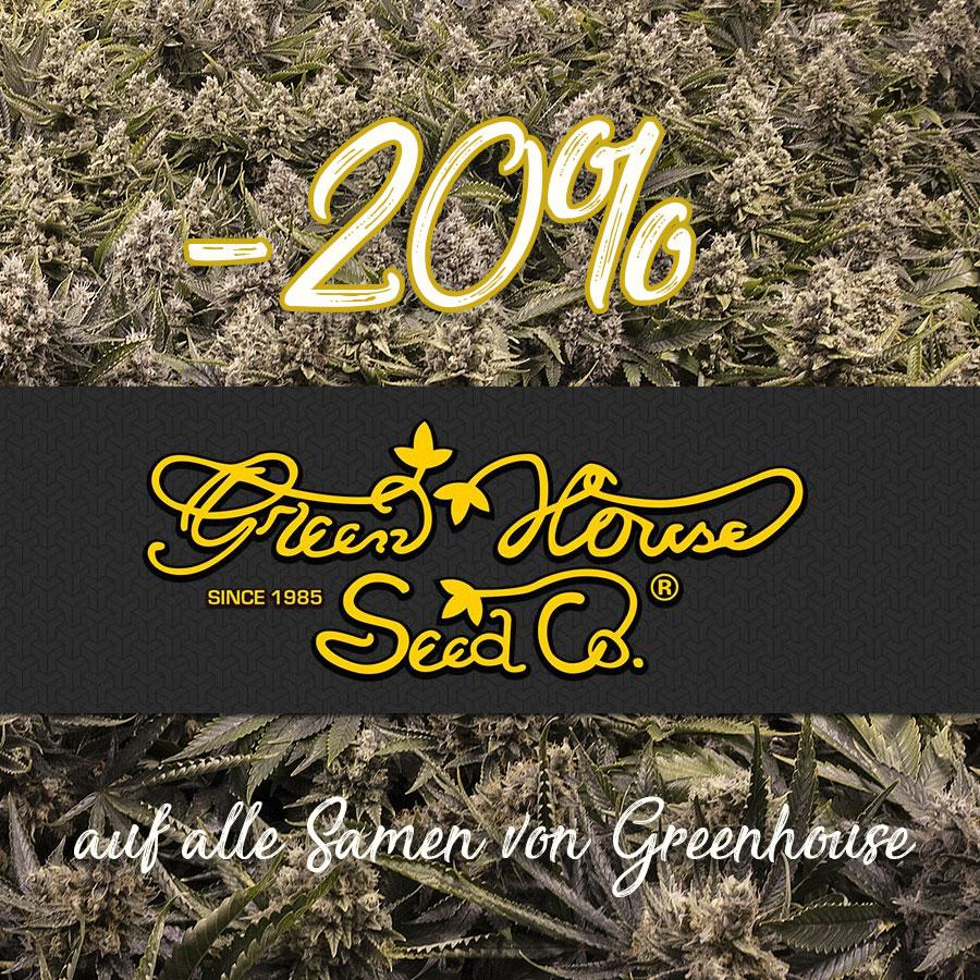 Den kompletten Oktober gibt es 20% auf alle Samen von Green House Seeds