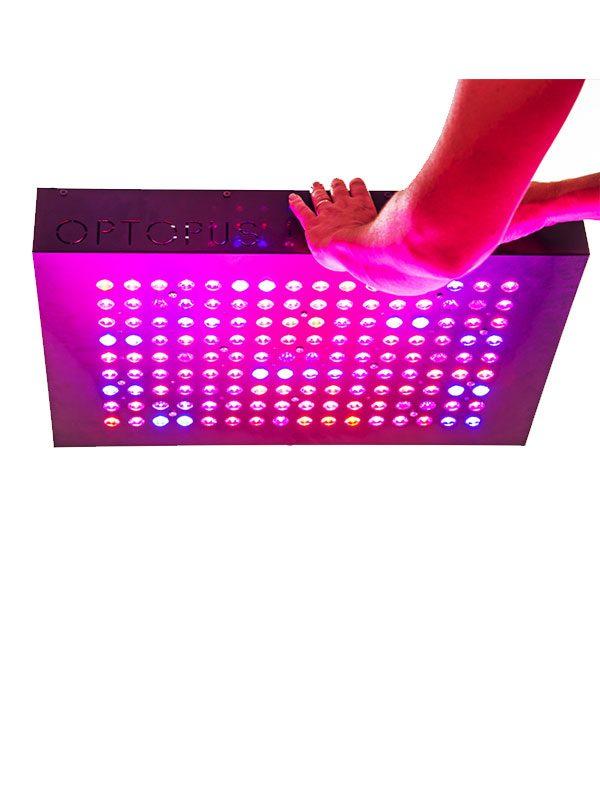 LED-System-optupus